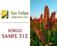 Semilla de Sorgo Híbrido - Sanfe 312 - Silero