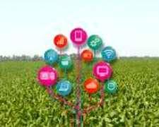 Monitoreo Online de Cultivos