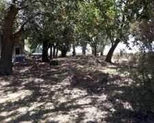 Predio Rural L.v. Lopez Santa Fe