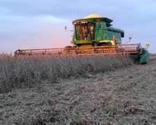 Busco Campos para Arrendamiento para Agricultura y Hacienda