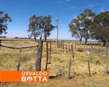 188 Hectareas en Jacinto Arauz, la Pampa