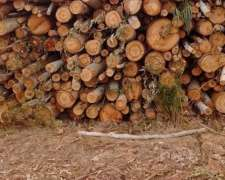 Vendo Rollizos Eucaliptus Blanco Y Colorado Para Leña