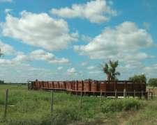 Estancia Agricola-ganadera en Producción