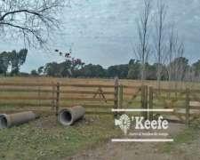 9 Has.chacra en el Pato.ideal Horticultor Tierra Virgen