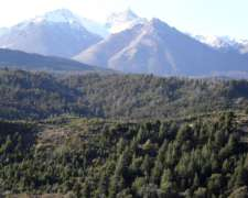 Cordillera Patagonica – Comarca Andina