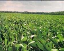 Busco Campo Agricola Pago con Departamentos