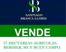 57 Hectáreas Agrícolas Berdier
