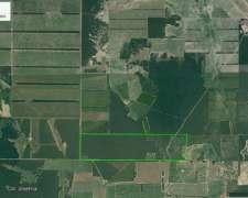 Excelente Campo Agricola de 353has