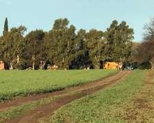 320 Has Agricolas Riglos la Pampau$s 1800/ Ha