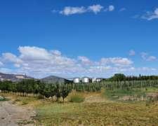 Campo Mixto Patagonia Chubut