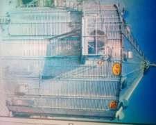 Silo Secador TOP DRY - Autoflow de 300 TN de Capacidad