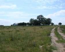 Venta de Campo Mixto 700 Has Gualeguaychú, Entre Ríos.