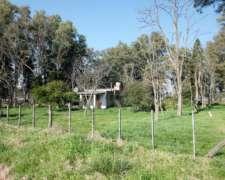 Buen Campo 50% Agrícola en San Miguel del Monte