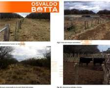 1237 Hectáreas en Loventuel, la Pampa