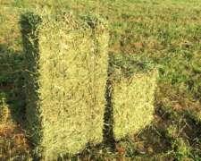Fardos de Alfalfa - Lasna Insumos - 25kg C/U