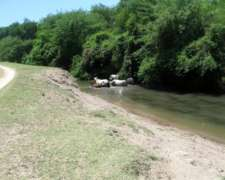 215 Has a Orillas del Rio Dulce.
