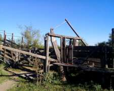 Campo Ganadero 1600 Has