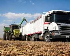 Se Incorporan Camiones Para Cosecha Maiz Soja