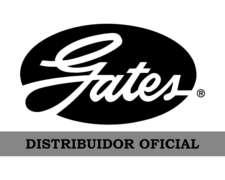 Correa Eje Intermediario a Batidor - DMF