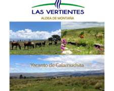 Yacanto Calamuchita Terrenos de 2/5/6 Hect Vistas Arroyos