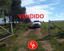 En Venta 250 Has. Perú la Pampa.-