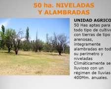 Valle Fertil - 47,169 Has. Agrícola Ganadero Agua Río y Pozo