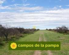 Venta Campo 10.000 Ha Utracán - la Pampa