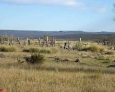 Venta de Campo en Linea SUR Rio Negro