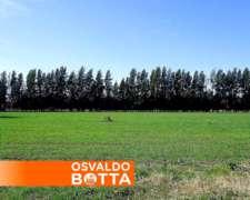 300 Has. Navarro Provincia de Buenos Aires