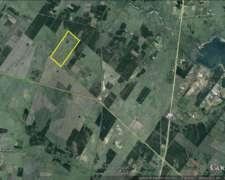 Campo Mixto – 155 Has. - Concordia - Ref. Cm0005: