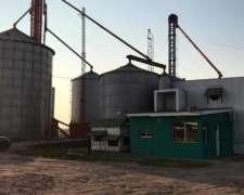 Vendo Alquilo Aceitera Fabrica de Expeller Planta Acopio