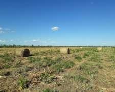 Campo Agrícola en Añatuya