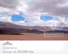 Campo de 520.000 Has. en Catamarca - Escriturado