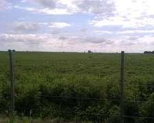 Vendo en Zona de Trenque Lauquen 1015 Has Agricola