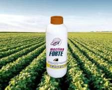 Mectina Forte Insecticida - Abamectina 1,8% ME