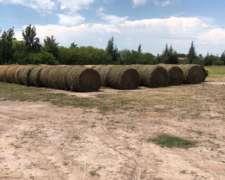 Venta De Rollos De Alfalfa - Tostado- Sta Fe