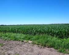 Se Vende S.A. Zona Bandera 100 % Agrícola