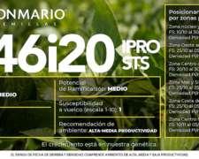 Soja Don Mario 46i20 Ipro STS - Lanzamiento