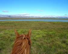 Bariloche - 4148 Ha - Río Negro