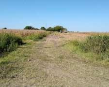 Hasenkamp - Entre Rios - 63 Ha Agricolas
