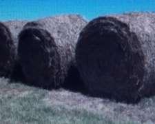 Rollos de Alfalfa de Buena Calidad 3469694002