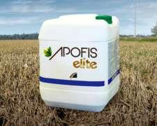 Apofis Elite Herbicida - Cletodim 24% EC