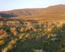 1000 Has Campo De Sierra Pastosa Con Valles Fertiles