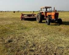 Fiat 900 e Trabajando