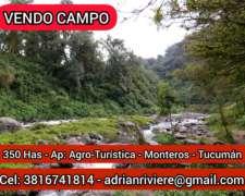 Campo en Venta - Monteros Tucumán