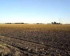 Campo 100 % Agricola - Casilda