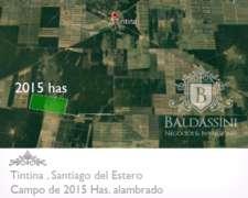 2.015 Hectáreas Agrícola en Tintina - Santiago del Estero