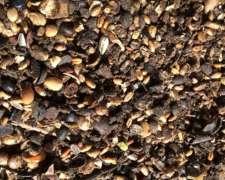 Barrido de Soja y Cereales para Engorde Vacuno