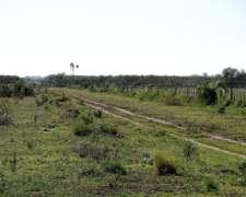 Ceres 2600 Has. Santa FE Campo en Venta Mixto Sobre Ruta