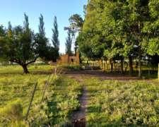 Campo en Venta en Punta Indio - 6 Hectáreas